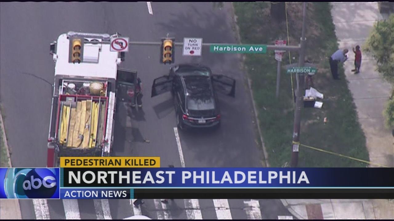 Pedestrian struck and killed on Roosevelt Boulevard