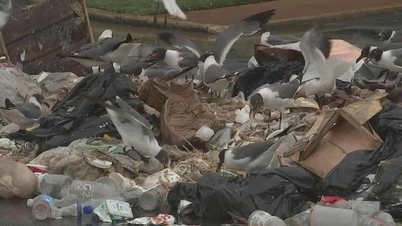 Trash dumped in NJ parking lot