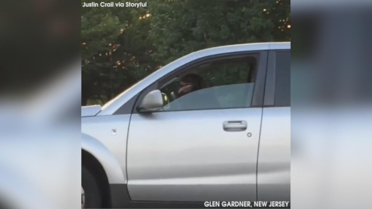 VIDEO: Impatient dog honks for owner