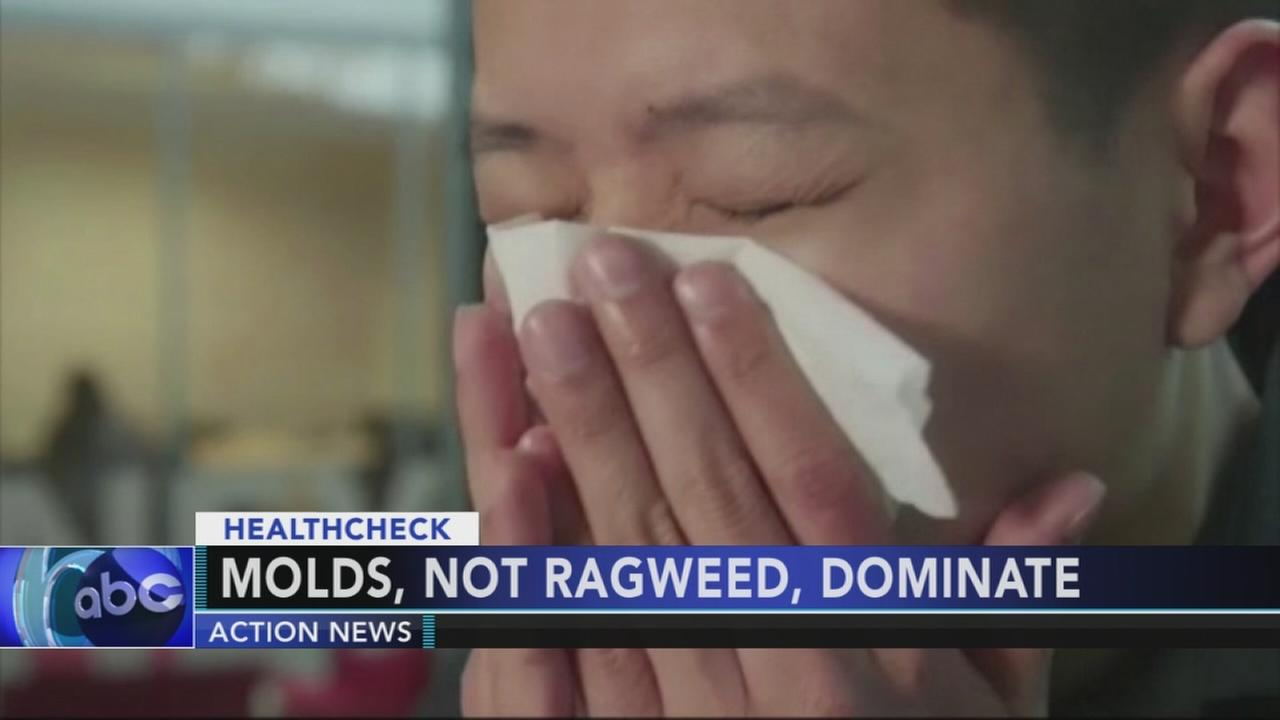 Wet summer making it rough for seasonal allergy sufferers