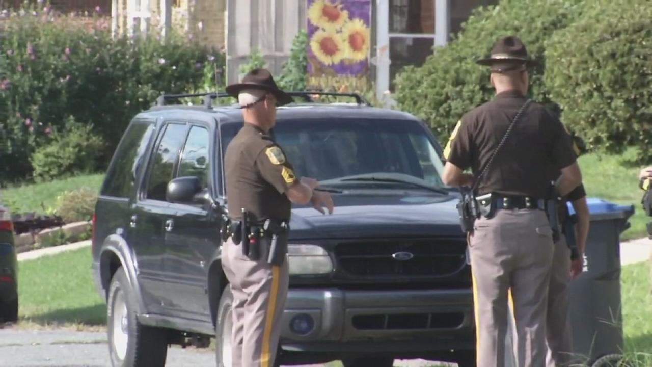 Wild crime spree in Delaware