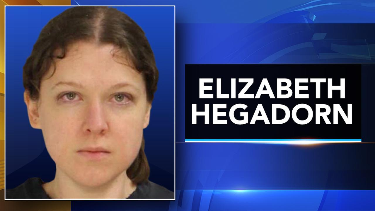 Police: Bucks Co. woman fired shots in direction of relative