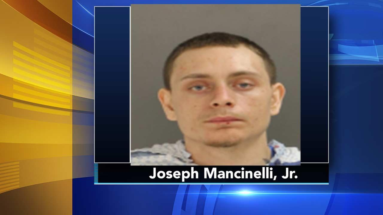 Unlicensed, intoxicated driver who killed Doylestown woman in crash sentenced