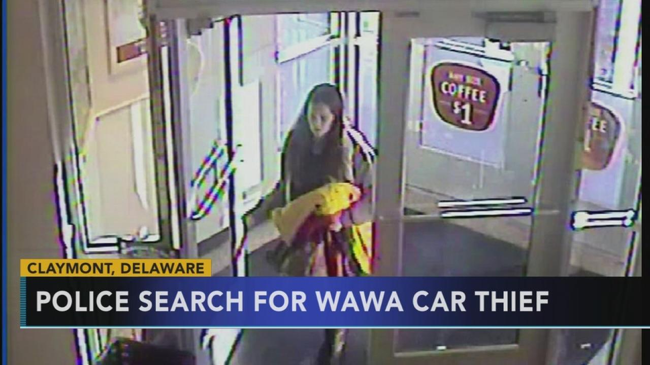 Video shows suspect in carjacking at Wawa in Delaware