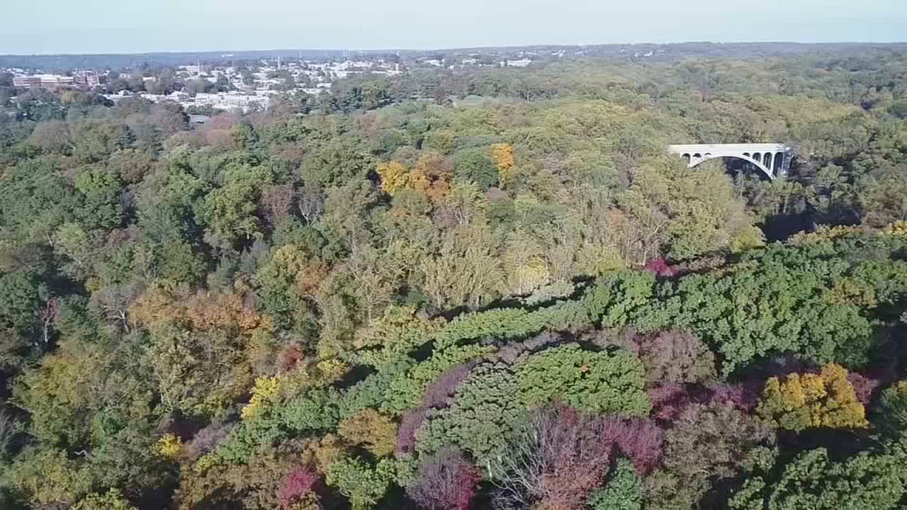 VIDEO: Lincoln Drive fall foliage