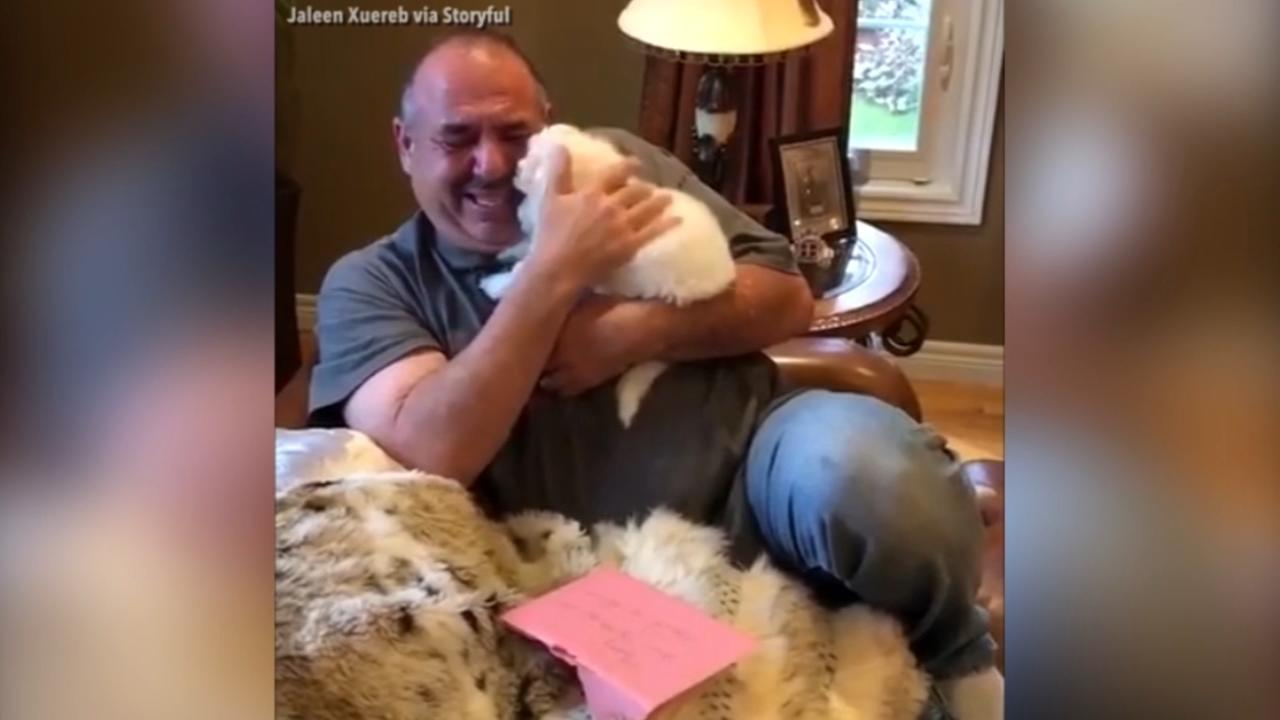Mourning father welcomes new dog into family