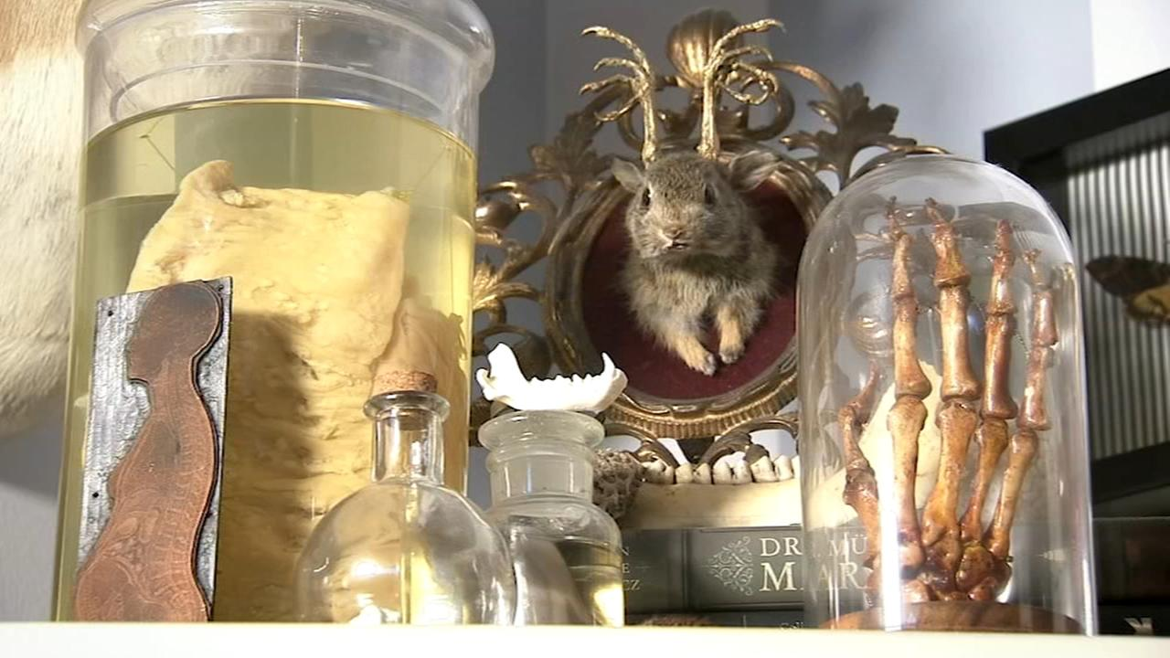 South Jersey woman posts autopsy photos on social media