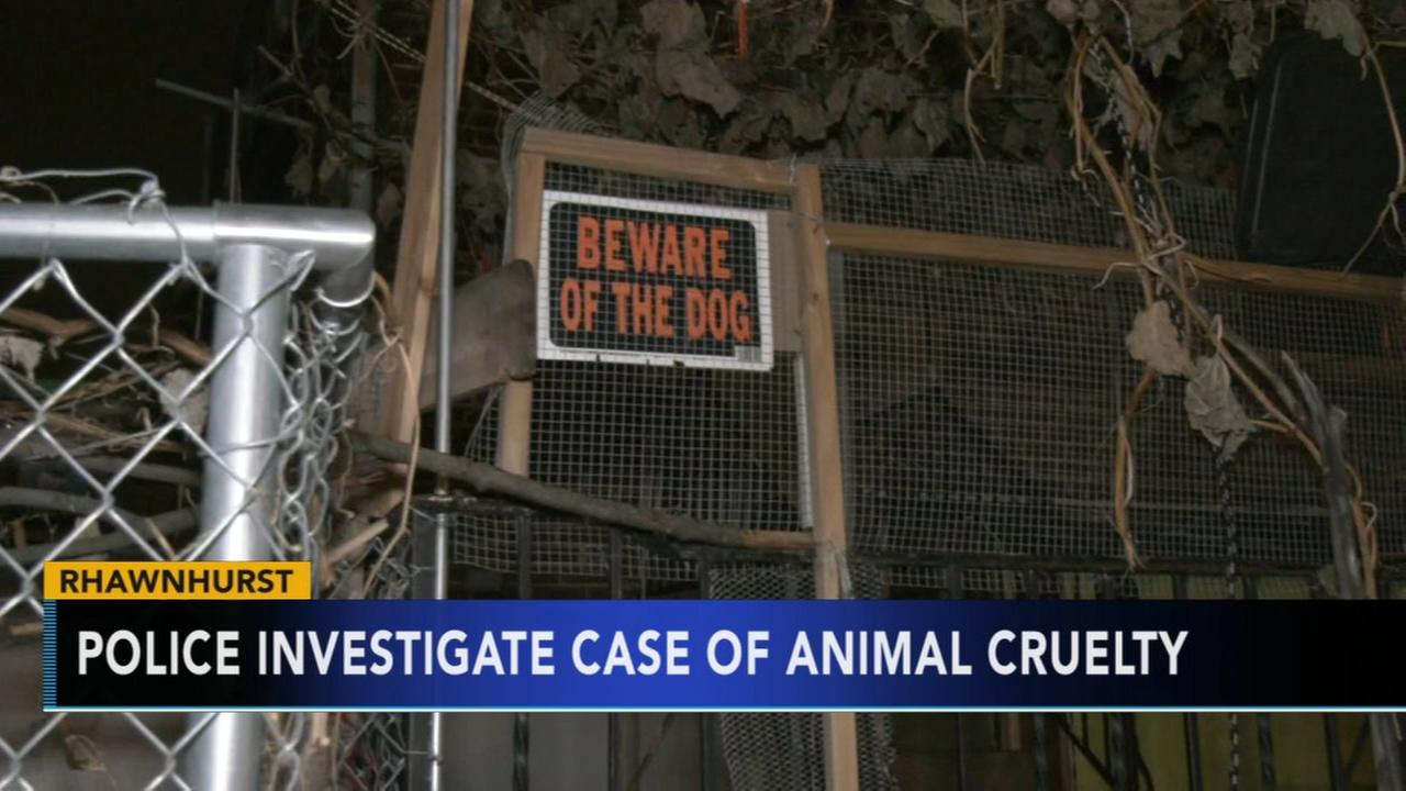Philadelphia police investigate case of animal cruelty