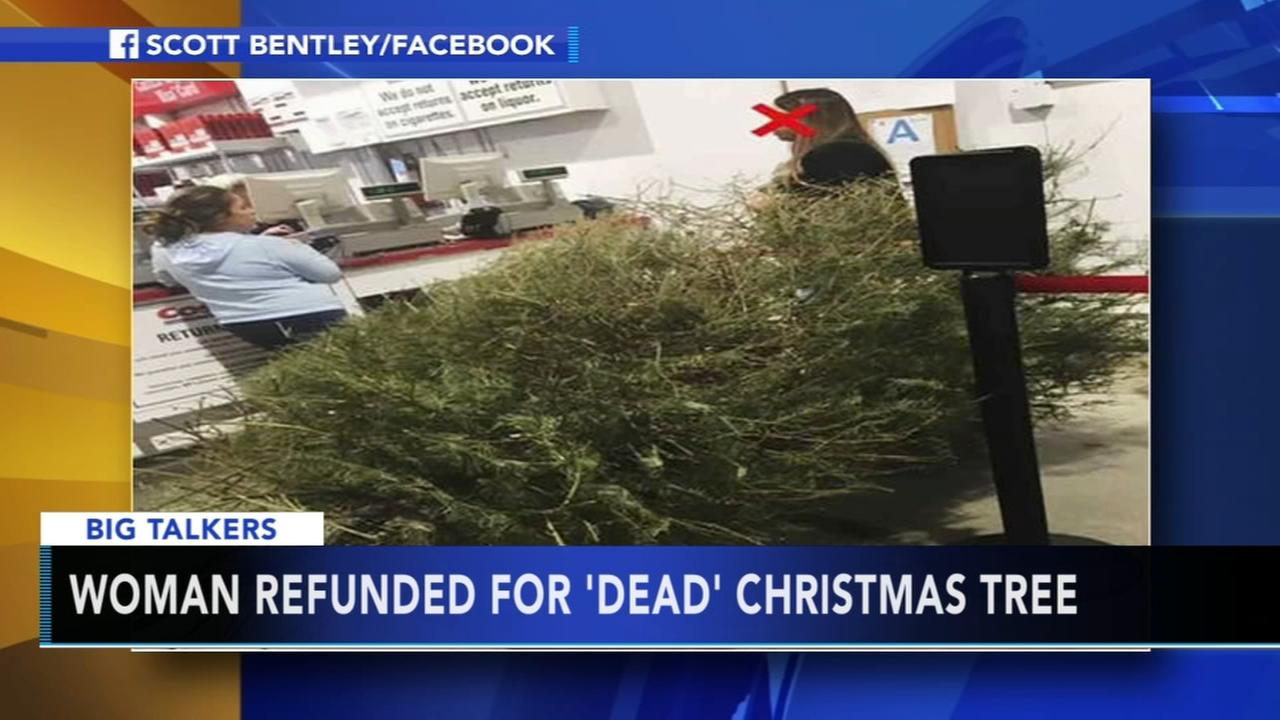 Woman returns dead Christmas tree to Costco in January