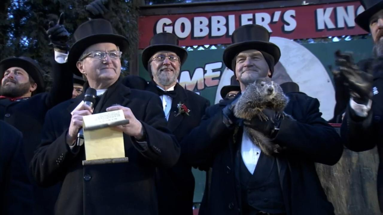 VIDEO: Punxsutawney Phil makes Groundhog Day prediction