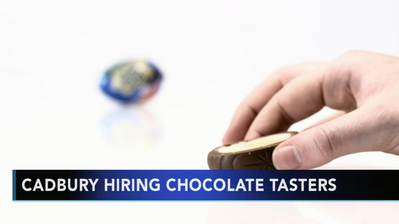 Cadbury hiring chocolate tasters