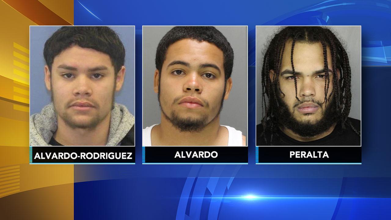 Alberto Alvarado-Rodriguez, Christopher Alvarado, and Kelvin Peralta