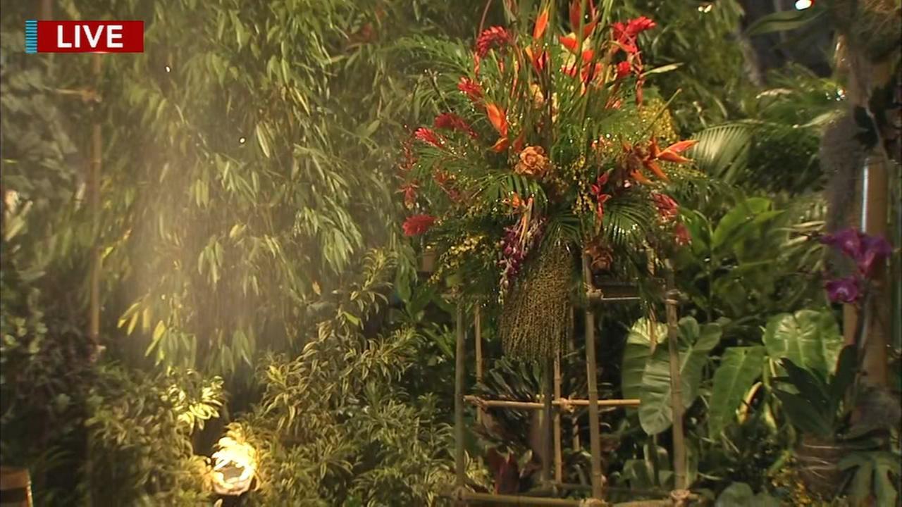 Wonders of  Water at the Philadelphia Flower Show