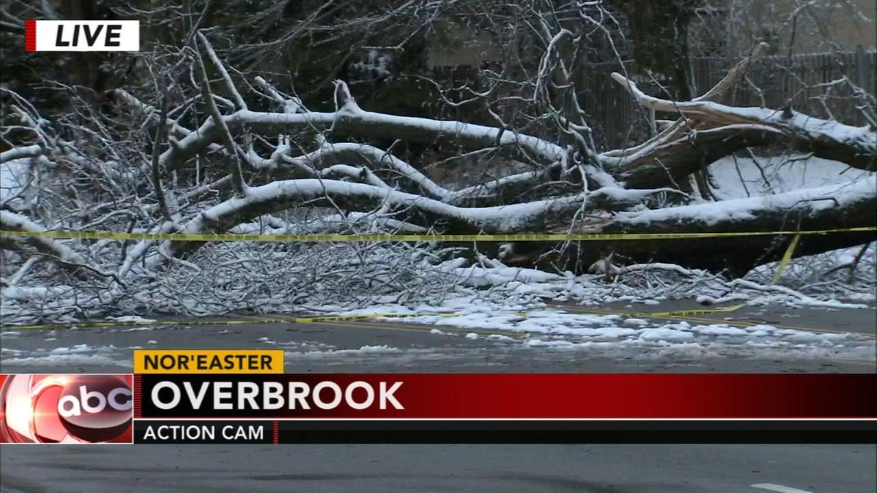 Noreaster leaves path of destruction throughout the Delaware Valley