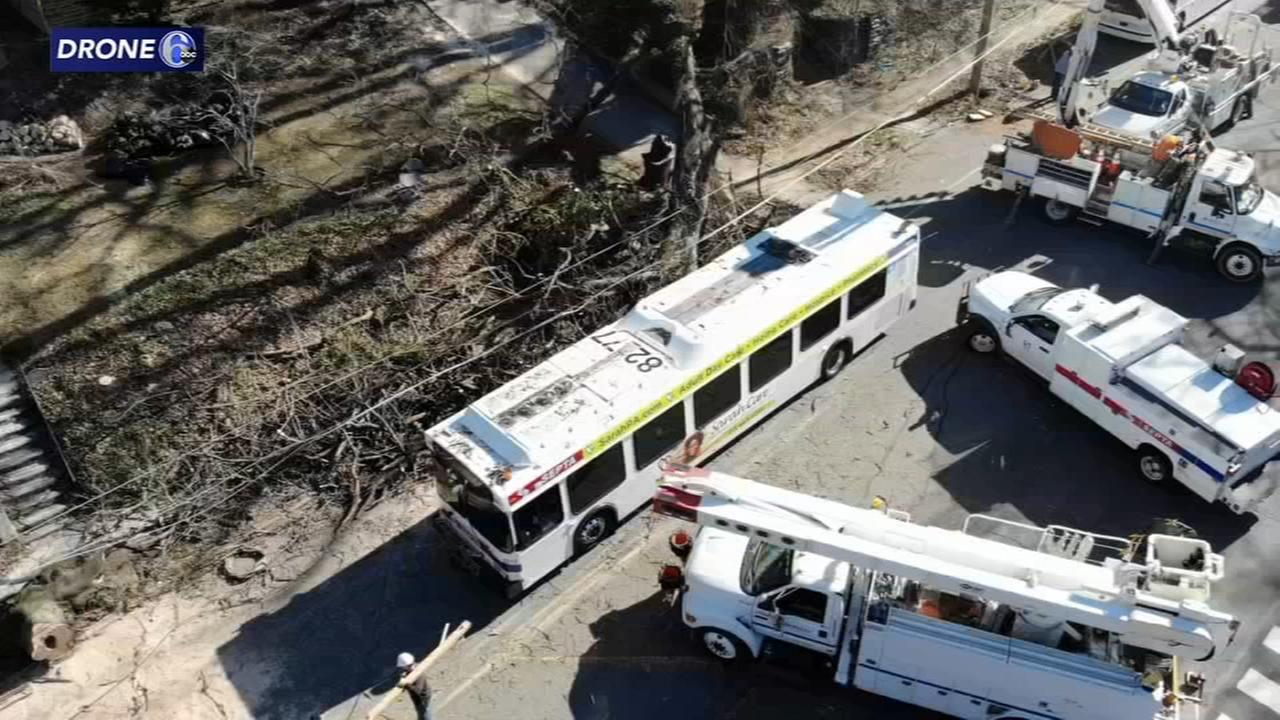 Tree falls on SEPTA bus in West Mt. Airy