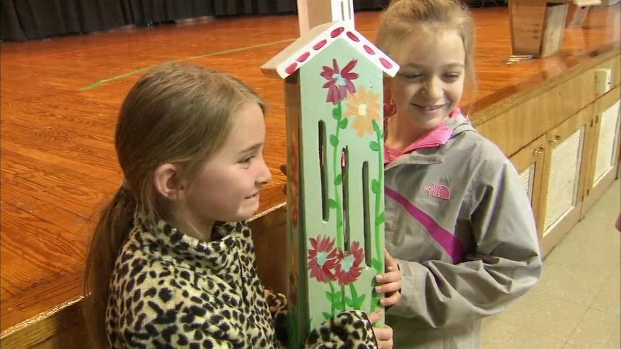 Students build houses for butterflies.