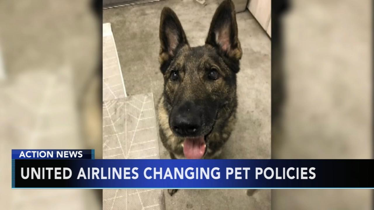 United Airlines changing pet policies