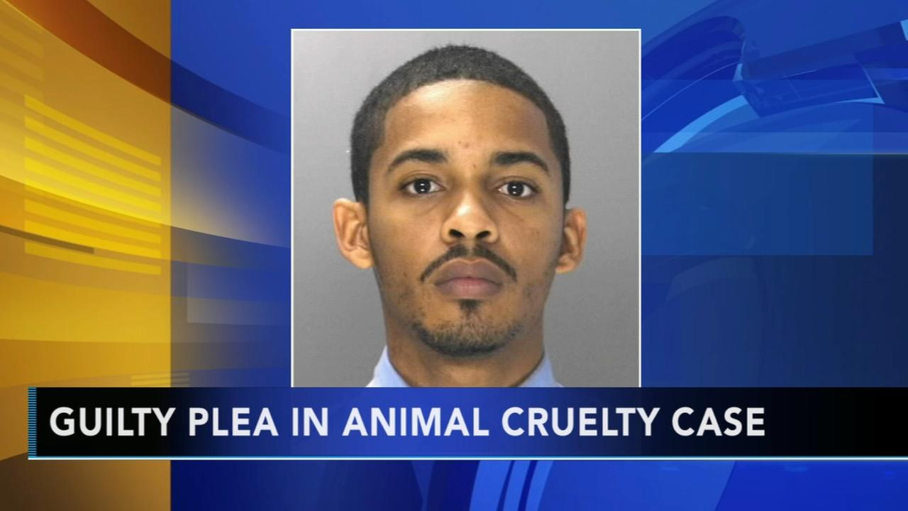Former Philly officer pleads guilty in animal cruelty case