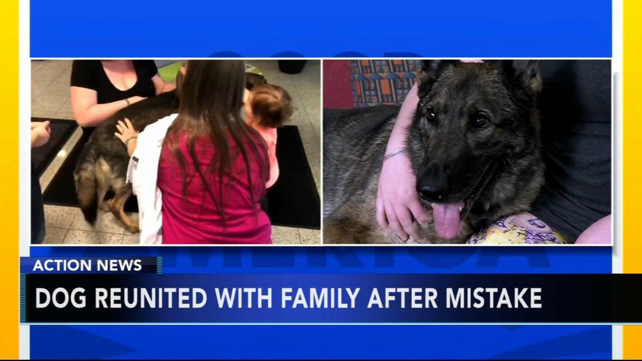 Dog flown to Japan by mistake returned to Kansas family