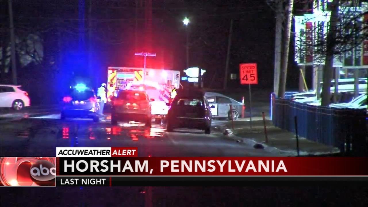 2 killed in Horsham crash