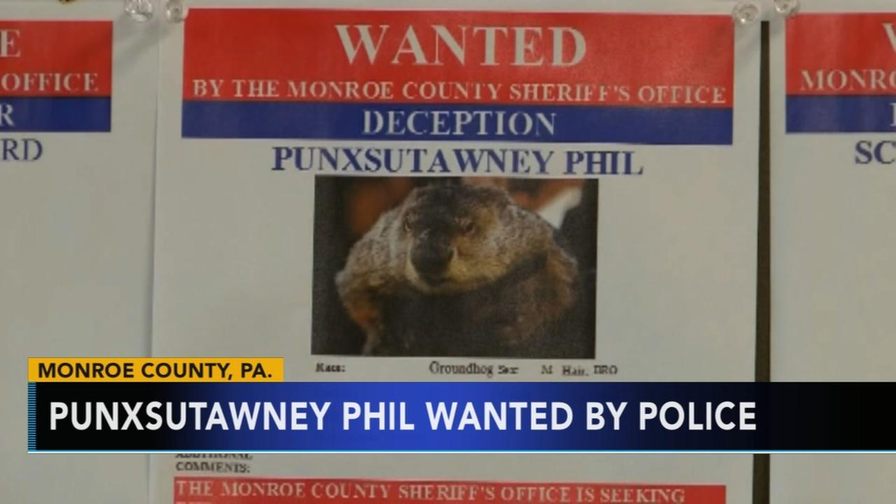 Punxsutawney Phil wanted by Pennsylvania sheriffs office