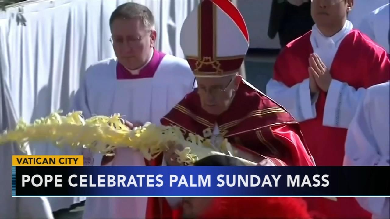 Pope celebrates Palm Sunday mass