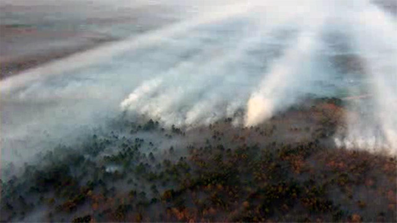 Forest fires continue to burn in southern New Jersey
