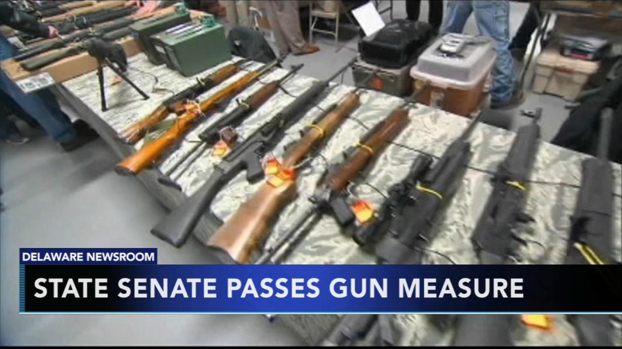 Mental health gun law clears state Senate in Delaware