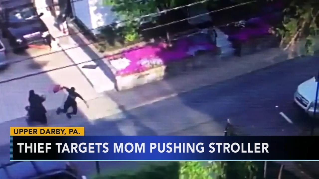 Thief targets mom pushing stroller