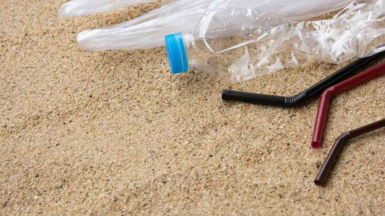 New Jersey shore town approves ban on plastic straws, bags