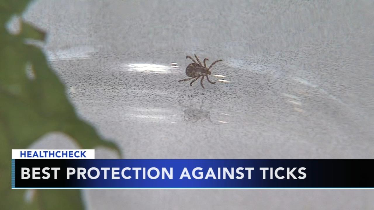 Best protection against tick bites