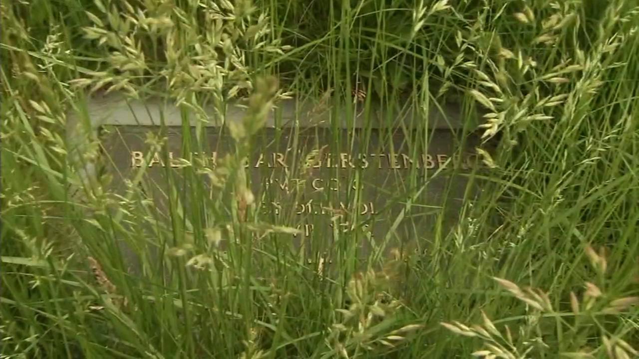 Grass covers gravestones in Wilmington cemetery