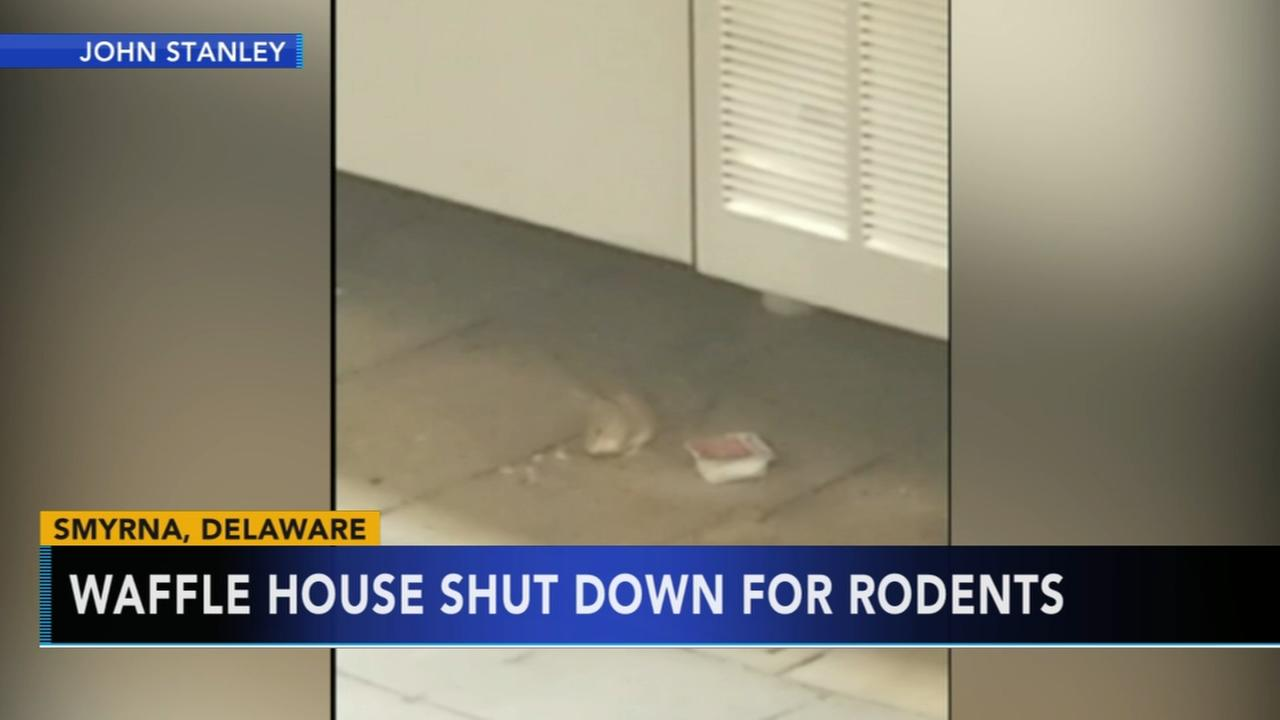 Waffle House shuts down due to rodents