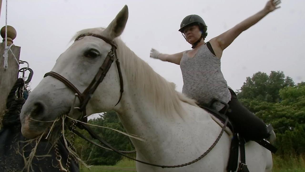 Shelter Me: Horse and Goat Yoga Farm