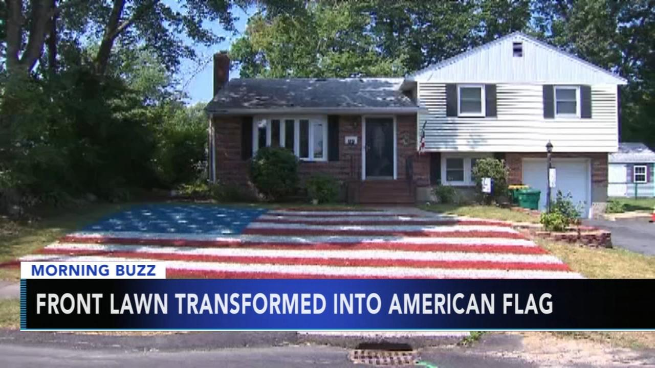 Man transforms front lawn into American flag