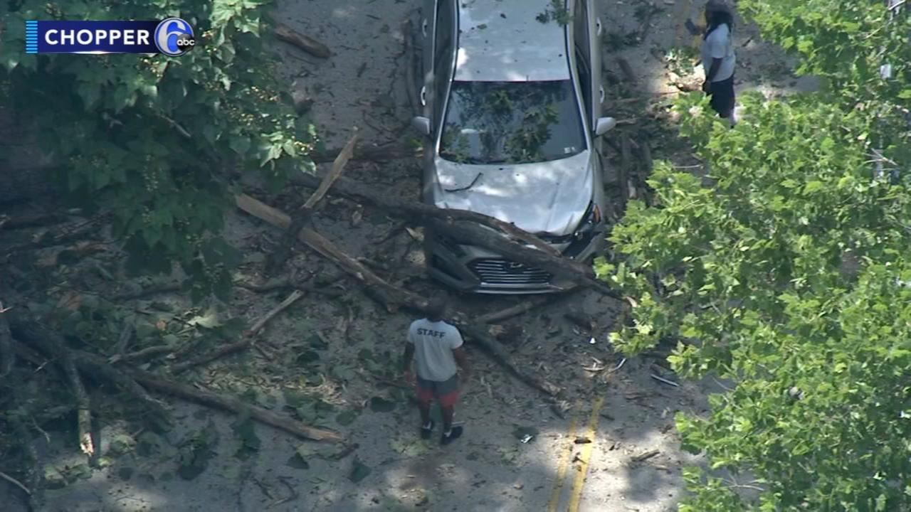 Tree branch falls on front of car traveling on Lincoln Drive