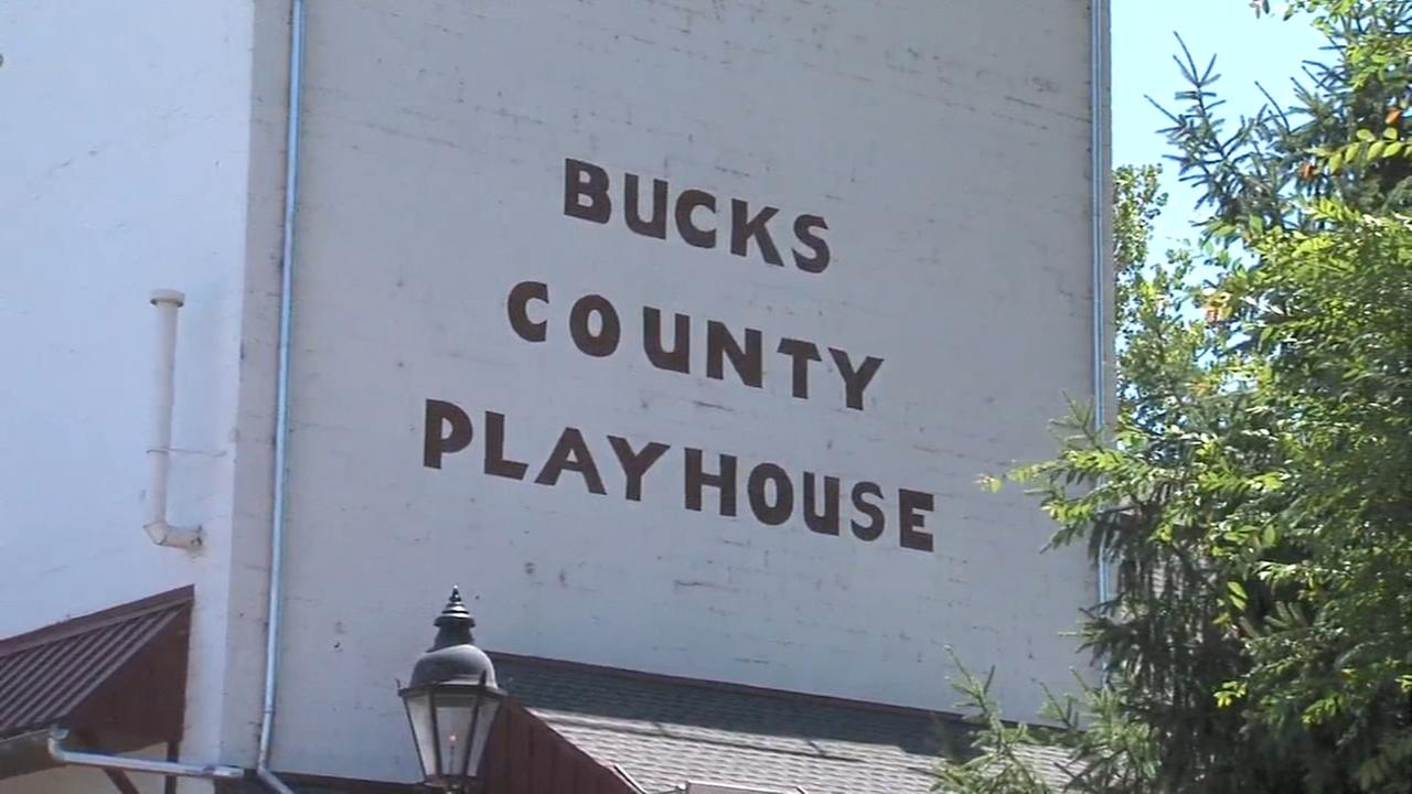 It has been a good year for the arts and theater in Bucks County