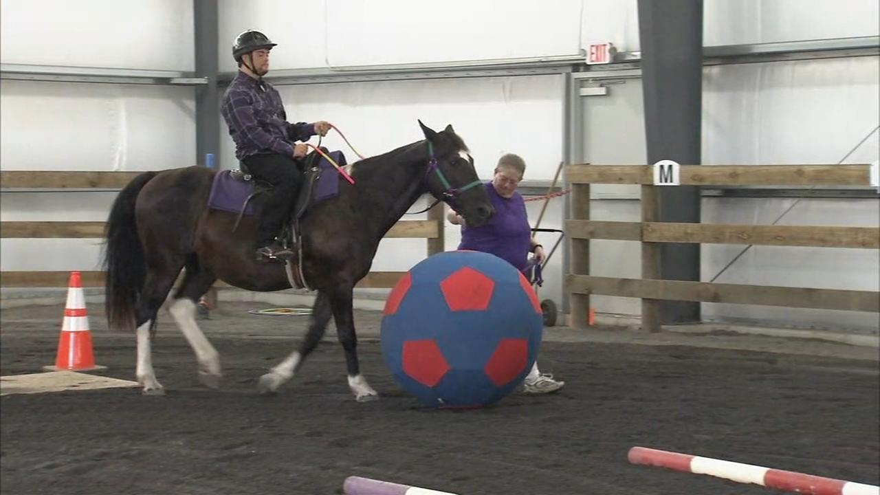 Special needs facility for one-of-a-kind type of therapy