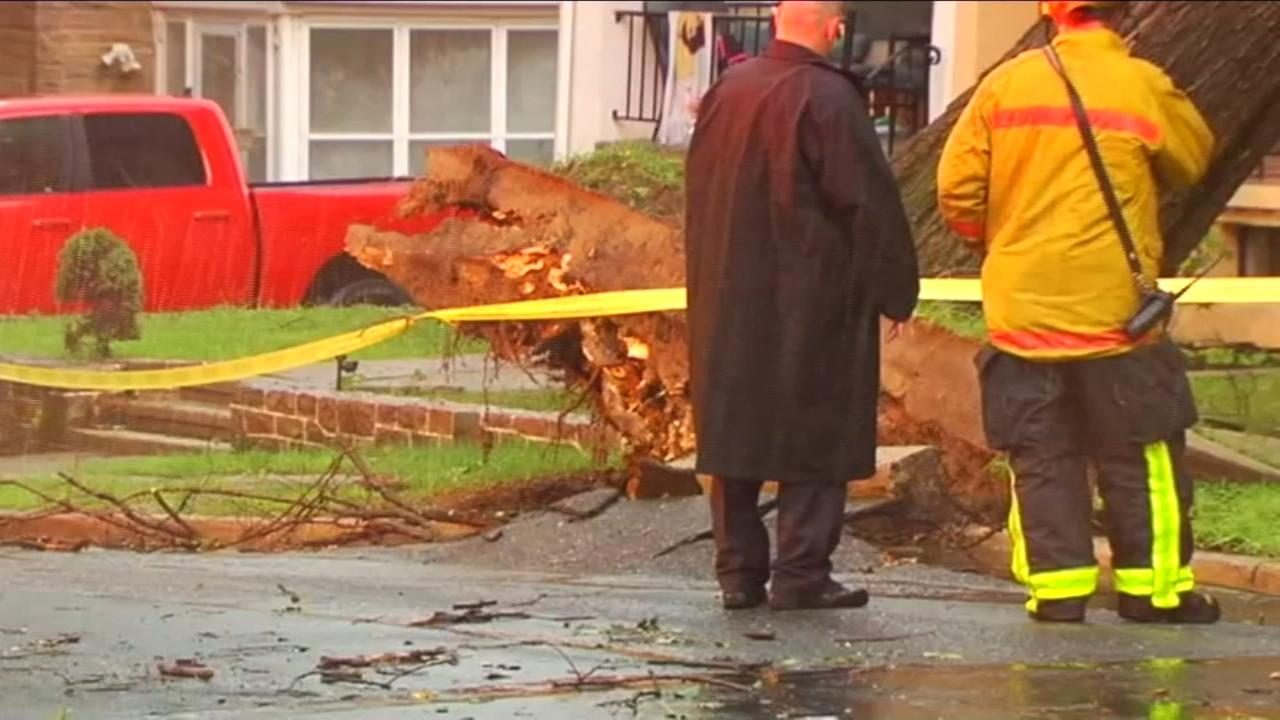Tree uproots and falls on house in Berks County