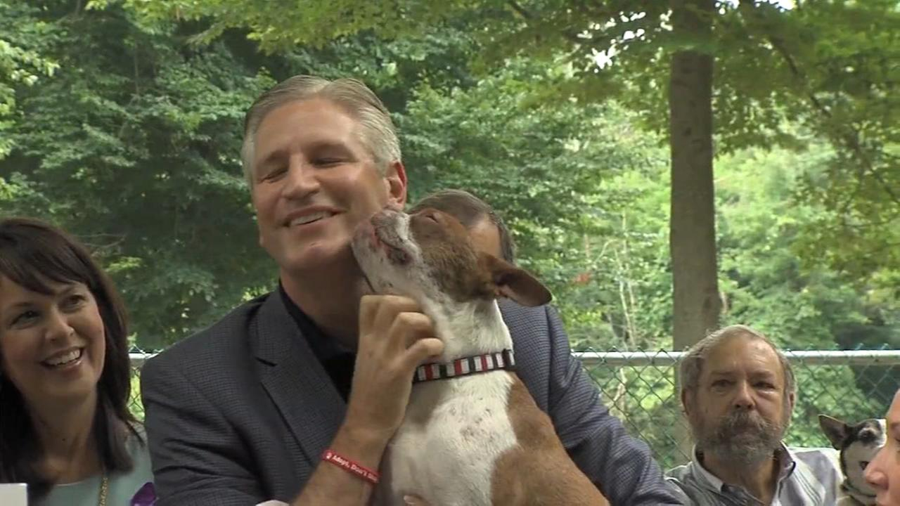 Pets and their owners celebrate a law to combat animal cruelty