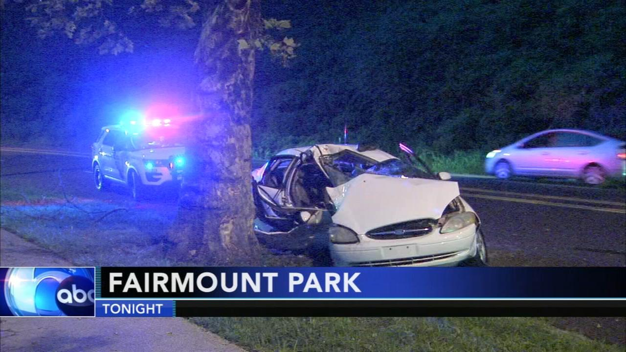 Car slams into tree along Kelly Drive