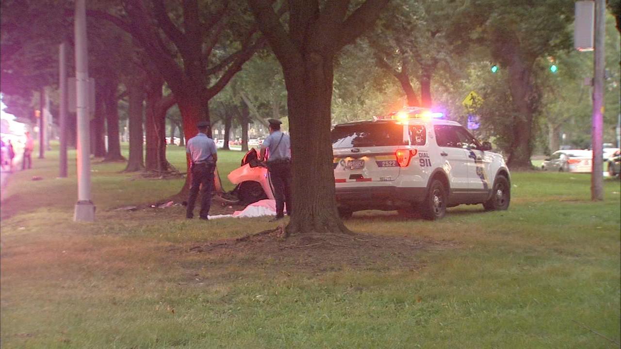 Woman killed when SUV slams into tree on Roosevelt Blvd.