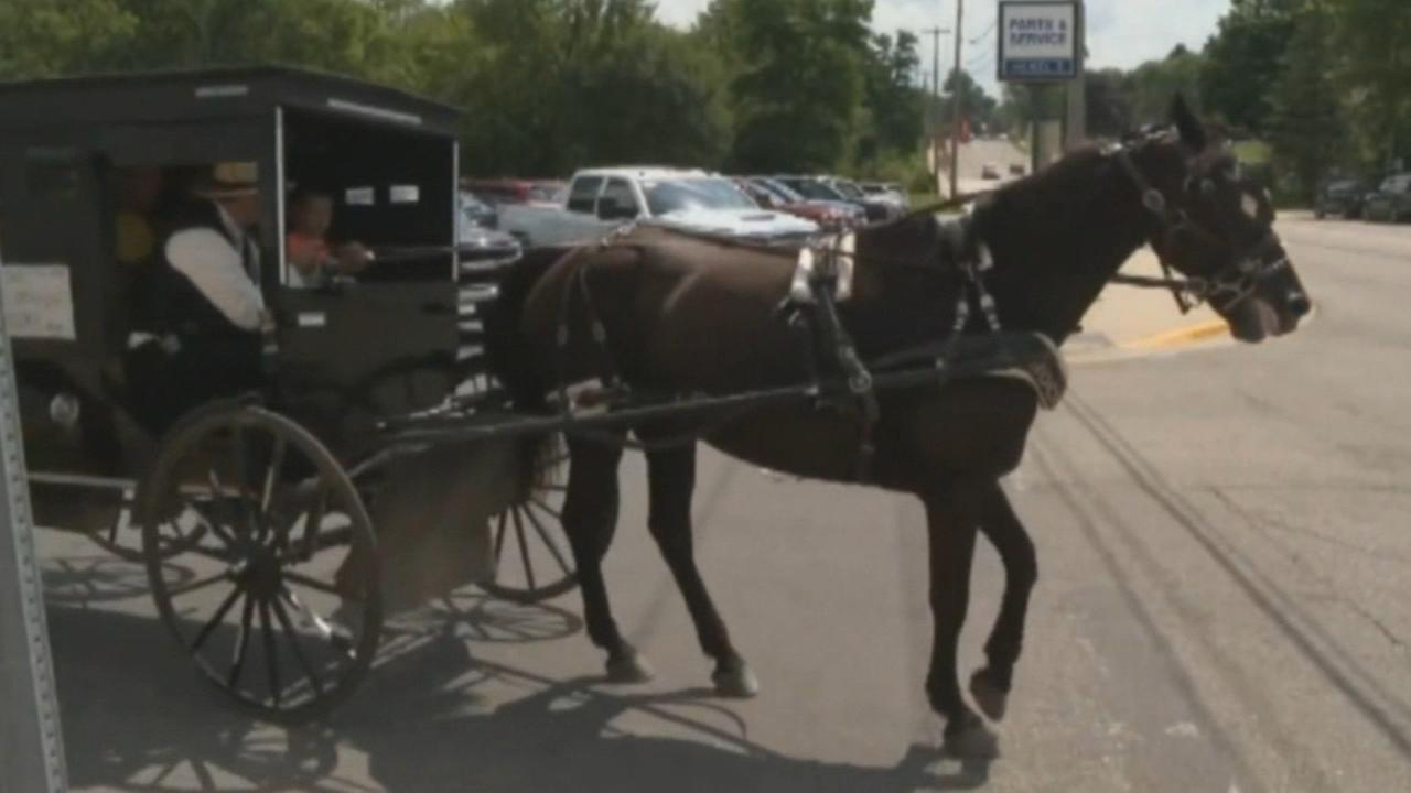Man launches horse-and-buggy ride-hailing service