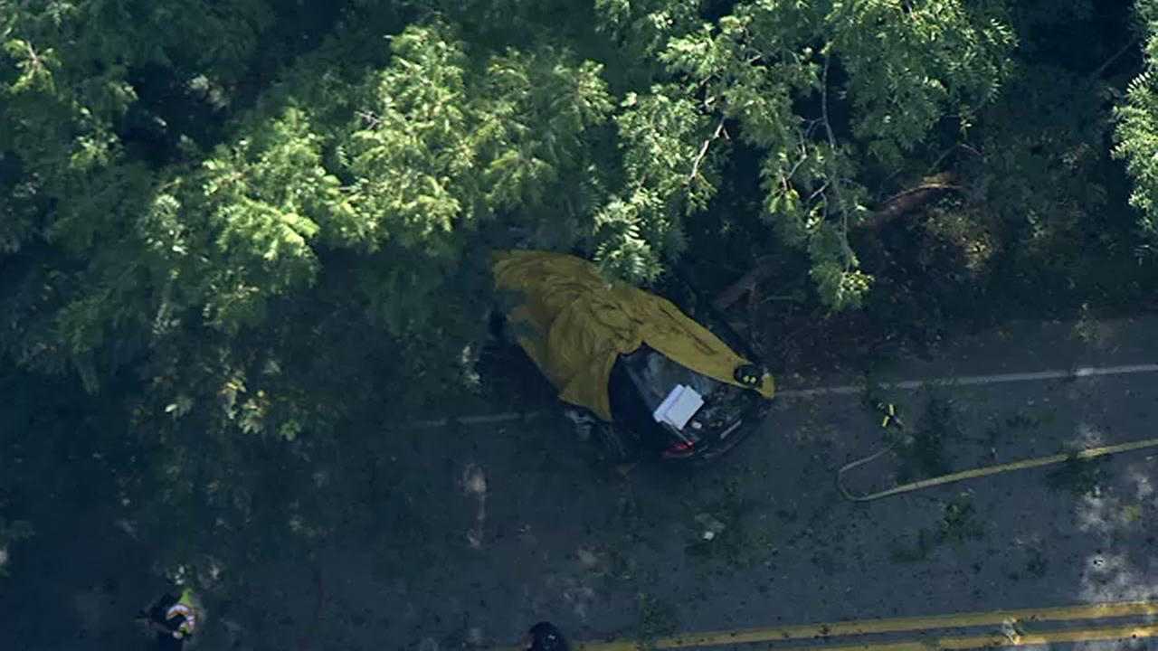 1 dead after vehicle slams into tree in Delaware County