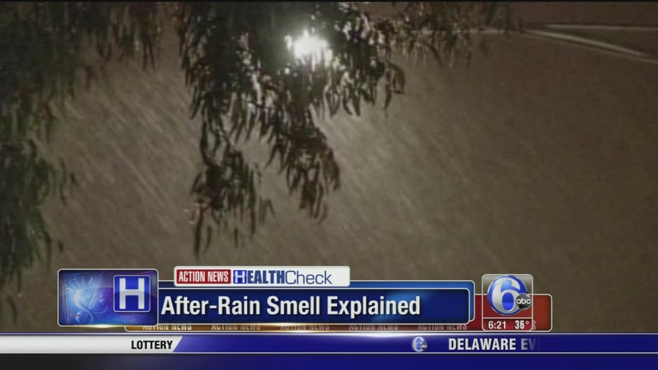 VIDEO: After-rain smell explained