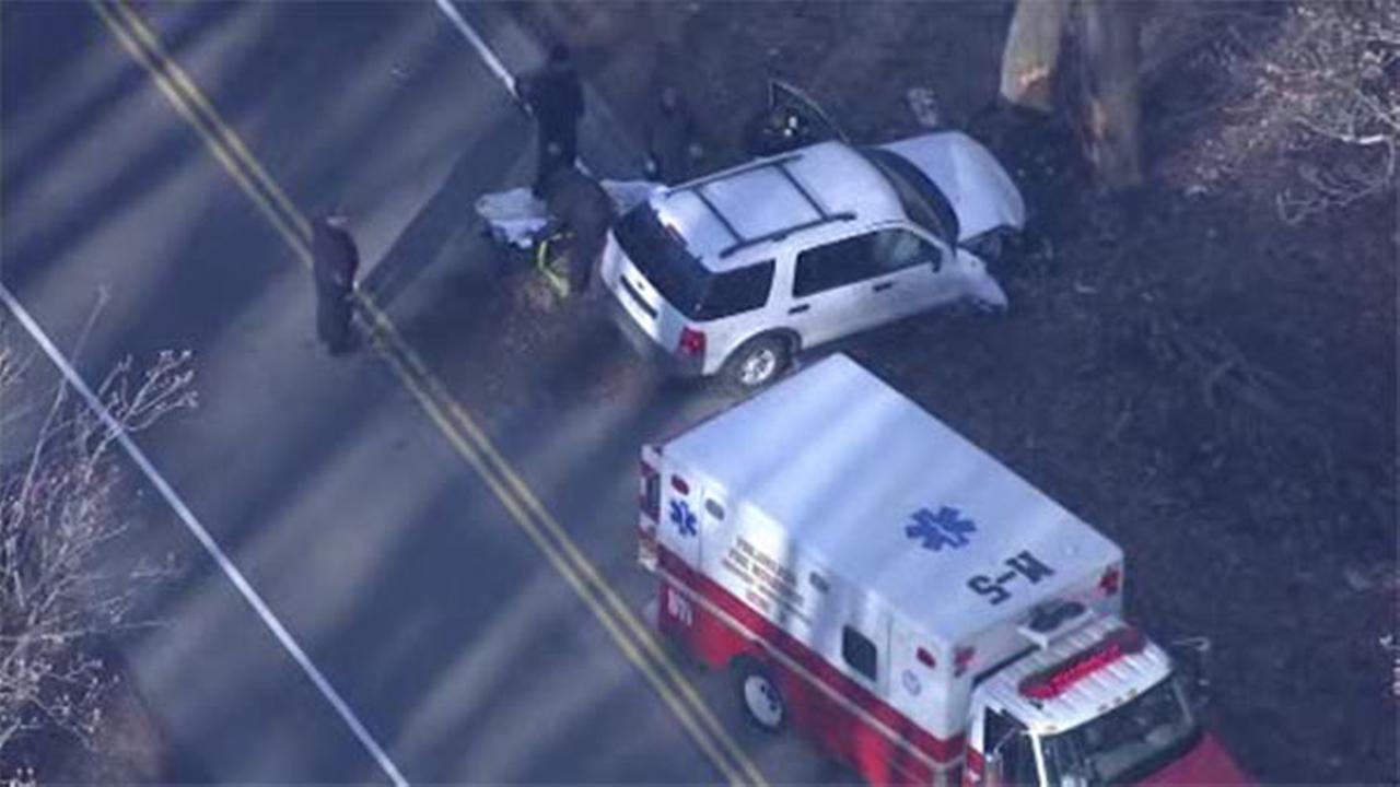 SUV crashes into tree in Andorra