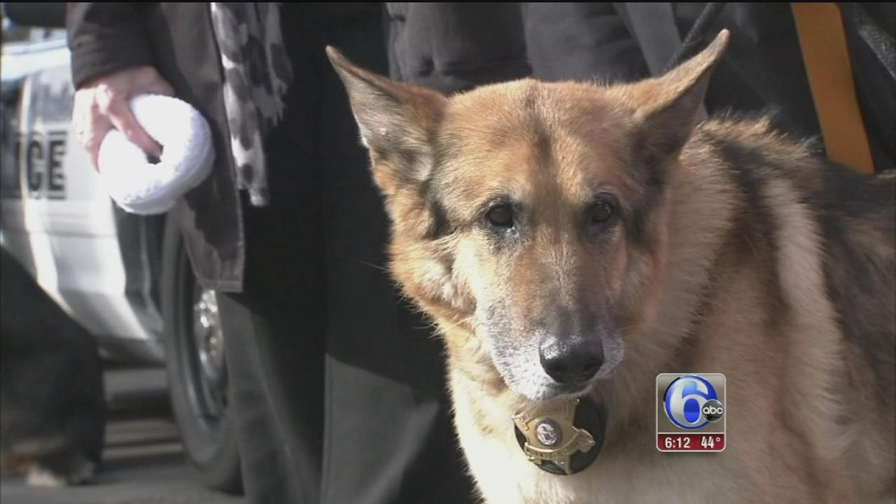 VIDEO: Long-serving police K-9 honored with final send-off