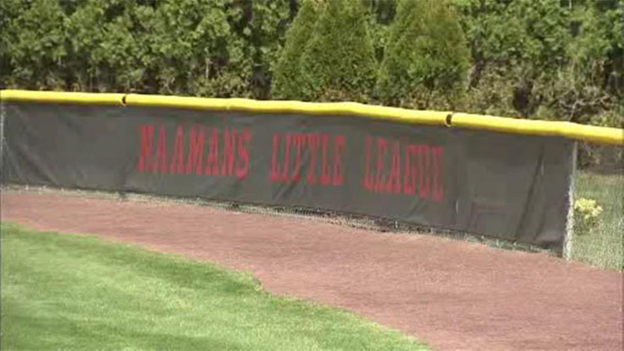 Volunteers clean up vandalism at little league park