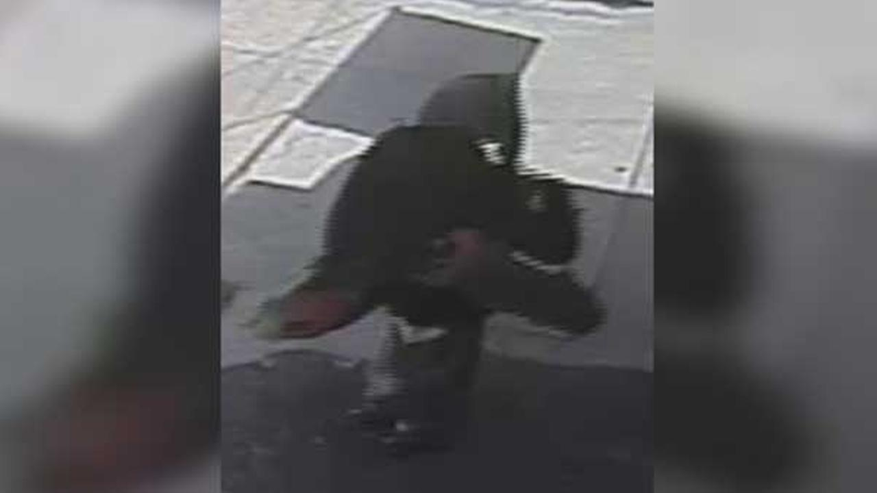 Philadelphia police are searching for a suspect who burglarized a dry cleaning business in the citys Logan section.