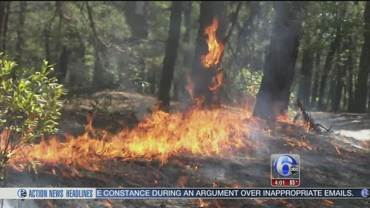 VIDEO: Warm, dry conditions equal forest fire risk